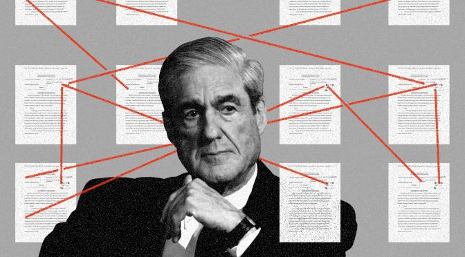 Robert Muller Trail Blazes Media With His Truth